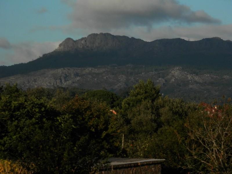 Montes del oeste (1)