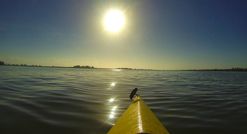 Indian River Spoil Islands-4