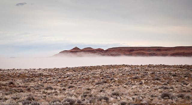Edge of the Fog