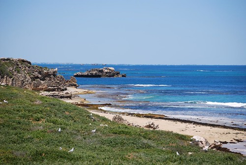 Shoalwater Islands Marine Park Entrance Fee