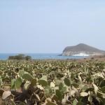 Cala de los Genoveses - Cabo de Gata