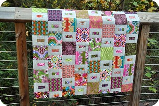 Glam Garden Baby Quilt | by j_q_adams