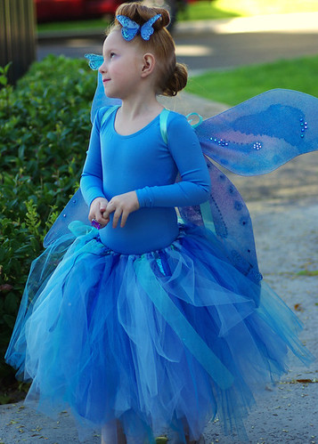 Butterfly Fairy Princess | by kathrynivy.com