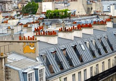 Paris Rooftops, with M. Chat | by tingley