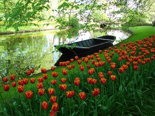 Boot en Bloemen