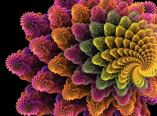Fractal flower | by Emmanuel Cateau