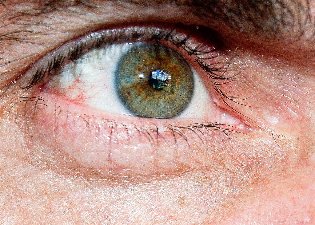 My Old eyes 2