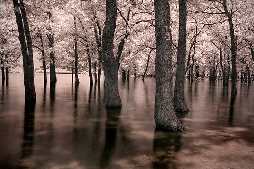 the flood (infrared) | by mike.irwin