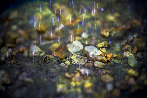 Rain, rain don't go away | by Southernpixel - Alby Headrick