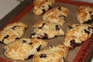 blueberry buttermilk scones | by Madison Bistro