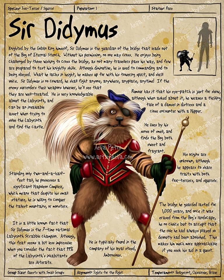 Practical Visitor's Guide to the Labyrinth by Aelia Petro - Sir Didymus
