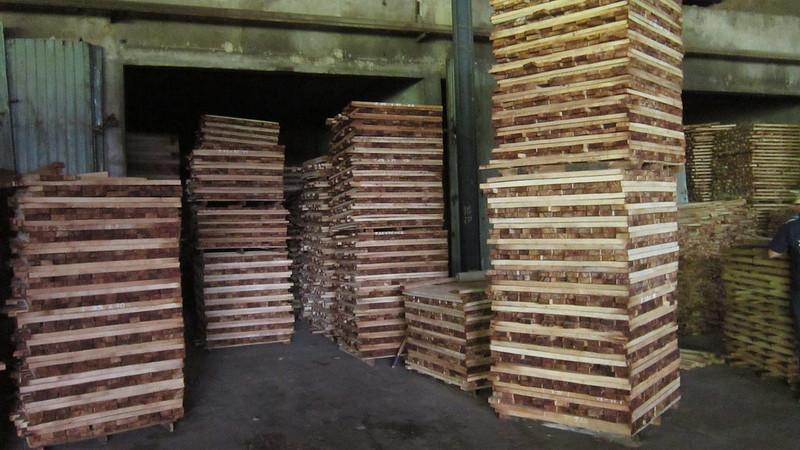 Phôi gỗ cao su cưa xẻ tẩm sấy