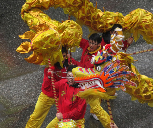 Chinese New Year Dragon Dancers