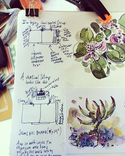 New sketching set-up trial notes #sketchbook #tools #hack #process  #sketching #pleinair #watercolor #flowers #succulents #setup #pineappleguava