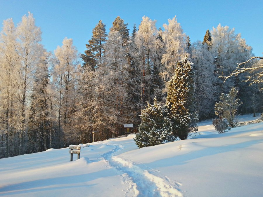 A Freezing Night in Koli National Park: Nice Try From a Wuss Hiker or an Unforgettable Extreme Experience? | Live now – dream later travel blog