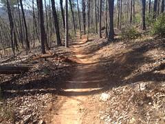 Jones Creek Ridge Trail