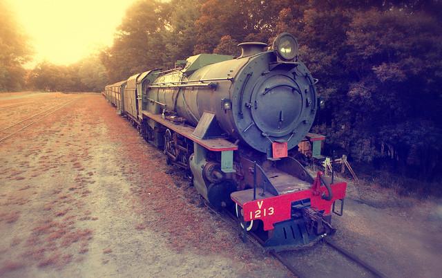 Old steam train, Pemberton, Western Australia