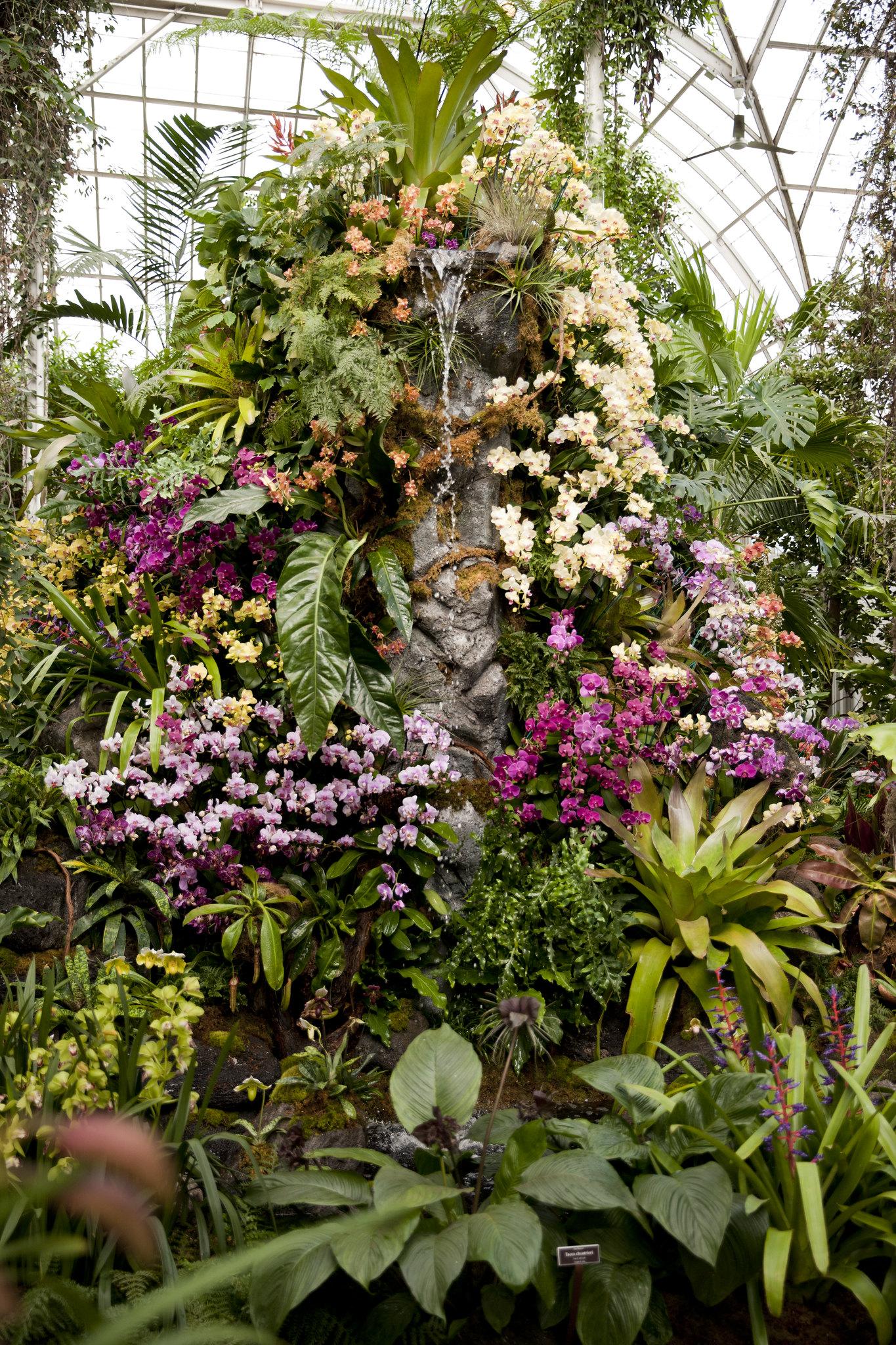 The New York Botanical Garden Flickr