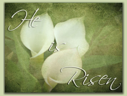 Easter Blessings! | by Cytosue