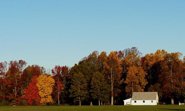 imagens outono nos EUA