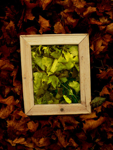 Framed Gold Green Leaves | by Leigh984