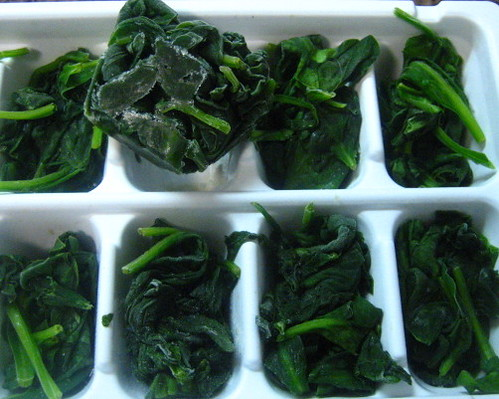 frozen cubes spinach | by pinprick
