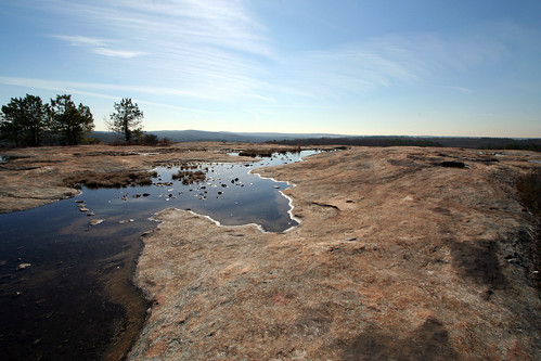 Arabia Mountain, Davidson-Arabia Mountain Nature Preserve, DeKalb County, Georgia 11 | by Alan Cressler