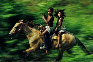 Chiapas Racers | by Art of Photography Show