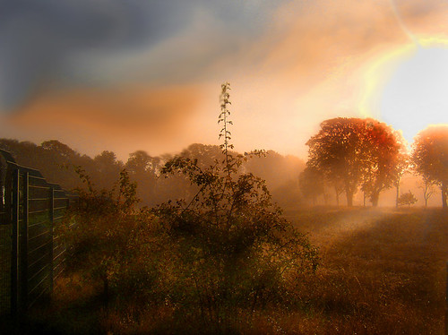 Early morning haze | by Per Ola Wiberg ~ powi
