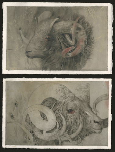 Ram Studies | by Feral Kid