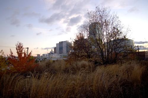 embankment 2.jpg