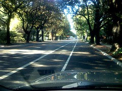 University Ave, Palo Alto | by scriptingnews