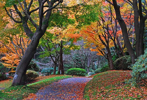 Nitobe | by Surreal McCoy (Alvin Brown)