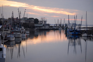 Shem Creek | by chasmike