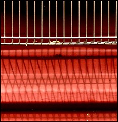 Red grid | by tina negus