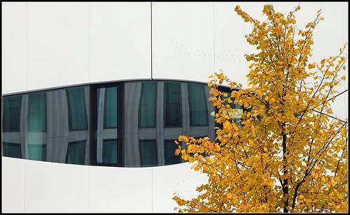 Curve and tree otto bock house berlin mattjp flickr