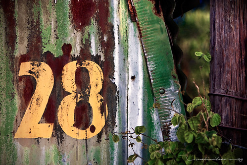 Twenty-eight ...the perfect number? | by Rex Maximilian