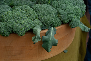 Broccoli at the Farmers Market | by Clara S.