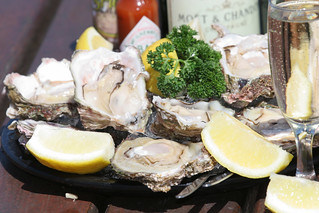 Knysna Oysters - Garden Route, South Africa | by South African Tourism