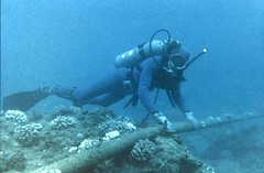 Diver Checking Underwater Protection of Cable | by The Official CTBTO Photostream