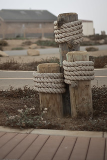 Three decorative posts with marine ropes on Harborwalk.  Experiments with the Canon 50mm f/1.4 lens shot wide-open for obtaining background blur | by mikebaird
