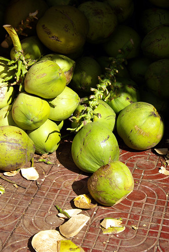 Coconuts, Cambodia | by The Hungry Cyclist