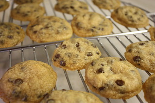 Tollhouse Style Chocolate Chip Cookies | by ilovemypit