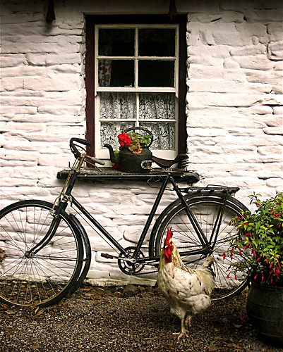Irish cottage | by ImagesByClaire