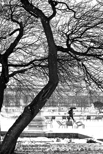 Jardin des Tuileries sous la neige - Paris - France | by louistib