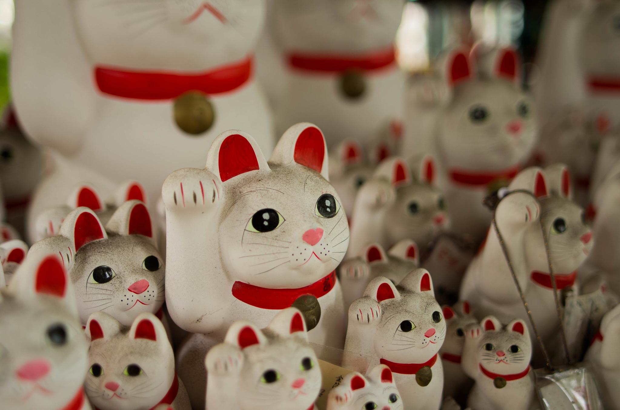 Lucky cat (Maneki-neko)