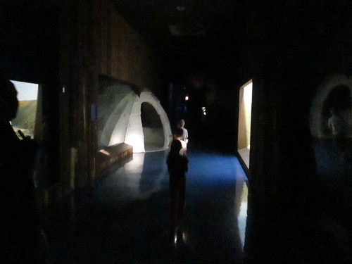 Sleepover Museum Of Natural History