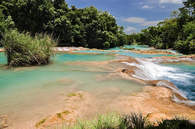 Cascadas de Agua Azul (54)
