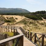 Boardwalk, Cala Mesquida, Mallorca