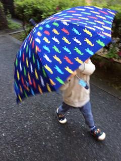 傘をさして歩きます 2014/4